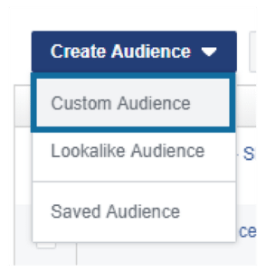 Select Custom Audience